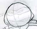 How to draw Ninja Turtle (5)