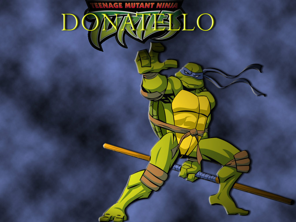 TMNT wallpaper 2003-2009 series (17)