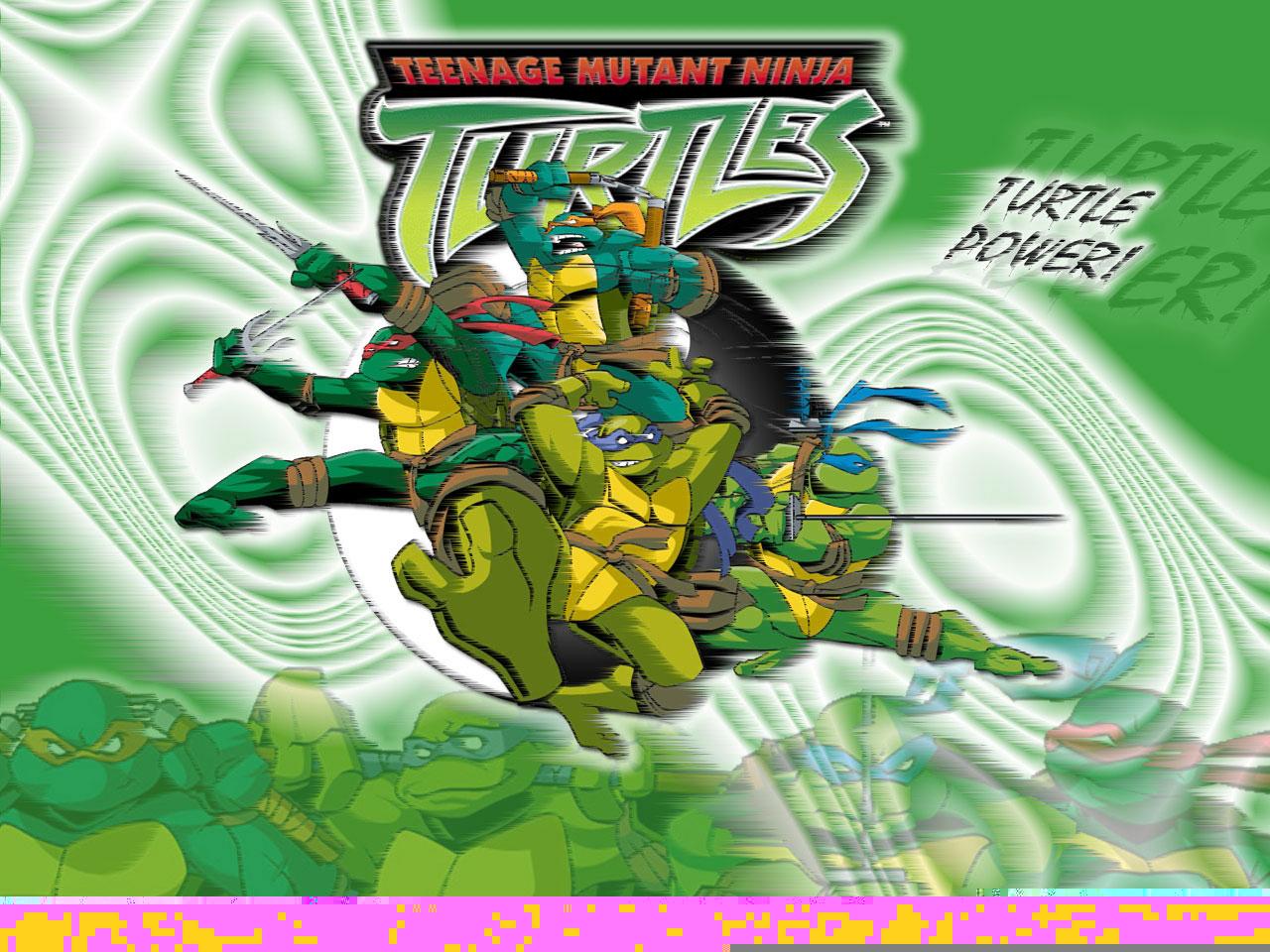 TMNT wallpaper 2003-2009 series (53)