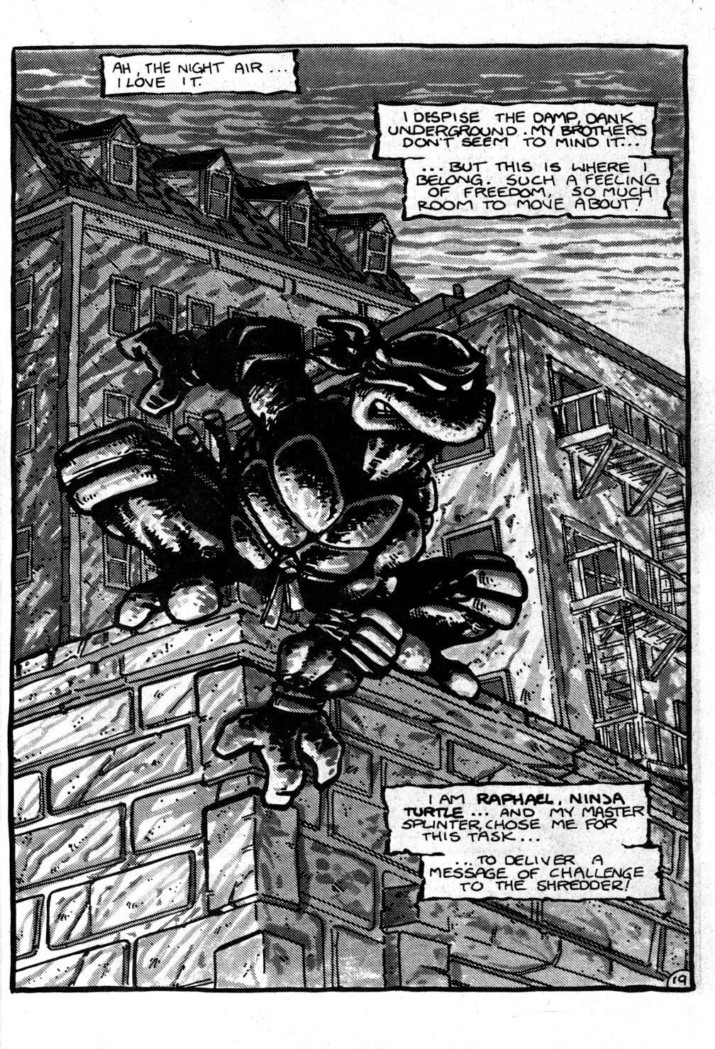 TMNT (issue 1, p. 20)