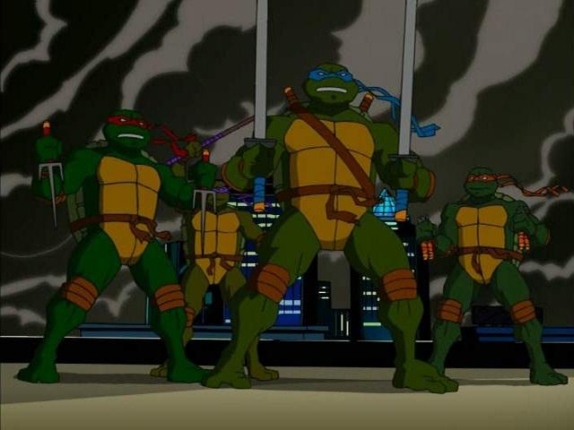 2003 turtles meet 1987 as pets