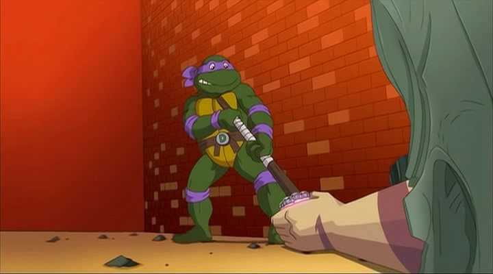 Donatello from Turtles Forever (1)