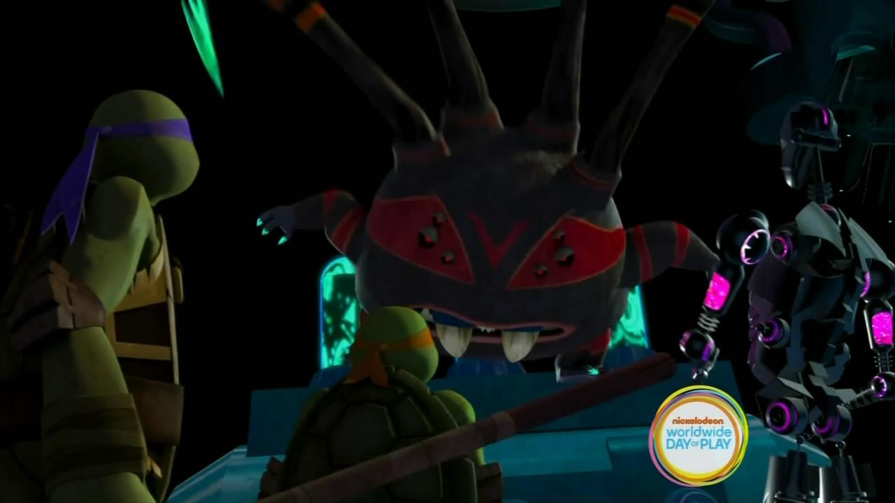 Turtle Temper (6)