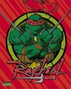 Mini-Posters-TMNT---Raphael-71144.jpg