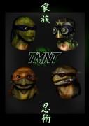 turtle_time_redux_by_rainingcrow.jpg
