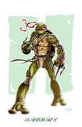 Raph_by_Darkness33.jpg