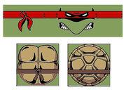 Turtles Color.jpg