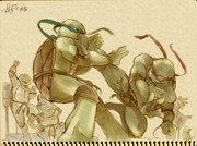 TMNT_fan_drawing_2_by_Rcaptain.jpg