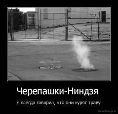 саша1.jpg