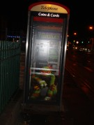 Телефонная будка с Микеланджело.jpg