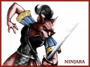 034_Ninjara_color.jpg