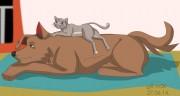 Cat-lying-on-Dog-by-R-m0k.jpg