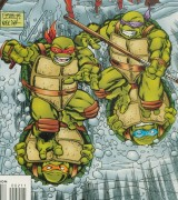 Year of the Turtle 2 000.jpg