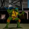 Аватары по Черепашкам Ниндзя - черепашки ниндзя аватар 2003 леонардо 60.png