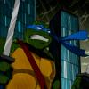 Аватары по Черепашкам Ниндзя - черепашки ниндзя аватар 2003 леонардо 42.png