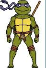 Аватары по Черепашкам Ниндзя - Донателло 1.jpg