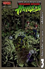 Продажа комиксов Illusion Studios TMNT SaiNW  - print_cover_tmnt_sainw_3.jpg