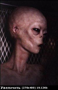 Любимые серии TMNT-2003 - гуманоид.jpg