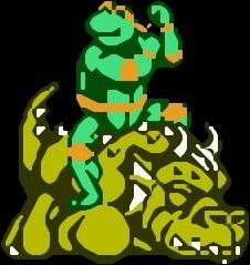 Teenage Mutant Ninja Turtles: Tournament Fighters NES  - mh.jpg