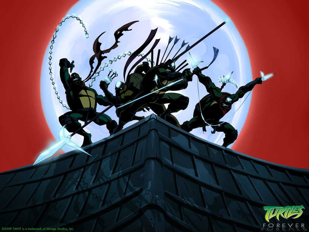 Мультивселенная TMNT - Вселенная мультсериала 2003.jpg