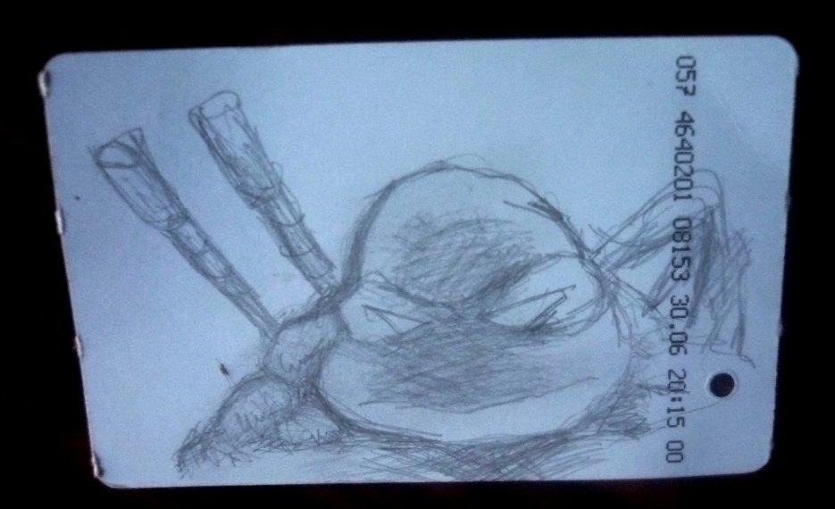 TMNT рисунки от viksnake - P1040191.JPG