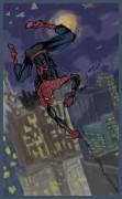 Рисунки от bobrа - Spider-man_by_bobr_2010..jpg