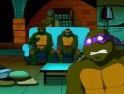 Скриншоты из мультиков - черепахи и телик.jpg