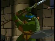 Ваша любимая Черепаха - черепашка леонардо.jpg