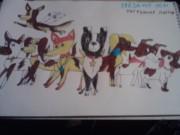 Небесные собаки от Katherine - P131110_22.22.jpg