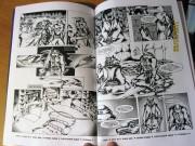 Продажа комиксов Illusion Studios TMNT SaiNW  - sainw_printed_6.jpg