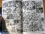 Продажа комиксов Illusion Studios TMNT SaiNW  - sainw_printed_7.jpg