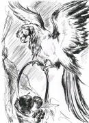 Kaleo s Art - попугай.jpg