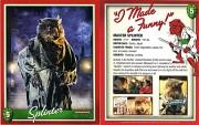 Коллекционные карточки TMNT, Blu-ray издания - Сплинтер.jpg