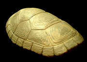 Косплей на Черепашек Ниндзя - turtleshell4.jpg