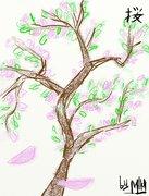 Рисунки от miky - Сакура.jpg