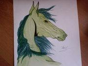 лошадь - Photo-0417.jpg