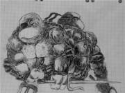 TMNT рисунки от viksnake - e4544a3283fb.jpg