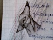 творчество от виктории - Photo-0466_e1.jpg