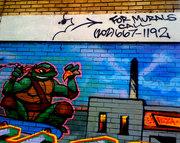 Изображения TMNT, их символика и т.п. на различных предметах - Черепашки Ниндзя - граффитти (1).jpeg