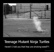 Приколы над ТMNТ - demotivation.us_Teenage-Mutant-Ninja-Turtles-Havent-I-told-you-that-they-are-smoking-weed_130054112535.jpg