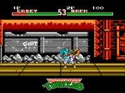 Teenage Mutant Ninja Turtles: Tournament Fighters NES  - Casey-vs-Raph.jpg