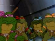 почемуто черепахи разного цвета. - п вапав.PNG