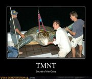 Приколы над ТMNТ - 11 (5).jpg