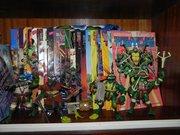 Черепашьи коллекции форумчан - DSCN6067.jpg