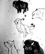 Встреча с бизоном 1 Зима. Шёл снегопад. Волчонок наткнулся на следы.Решил последовать за ними и набрёл на огромного рогатого зверя. - Photo-0530.jpg