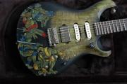 Изображения TMNT, их символика и т.п. на различных предметах - Черепашки Ниндзя - гитара (2).jpg