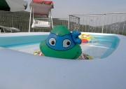 Изображения TMNT, их символика и т.п. на различных предметах - Черепашки Ниндзя - надувная игрушка.jpeg