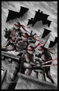Зарубежный Фан-Арт - TMNT_web_version by Jason Flowers.jpg