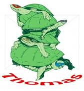 Изображения TMNT, их символика и т.п. на различных предметах - Проект для футболки.jpg