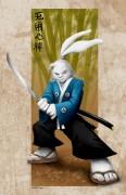 Зарубежный Фан-Арт - Ninja-Bunny.jpg